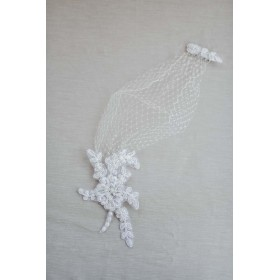 Little Lace Cage Veil